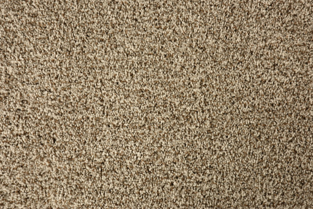 Carpet_Kane_Mirabella_Sandrift_Entry_Family_01_Close