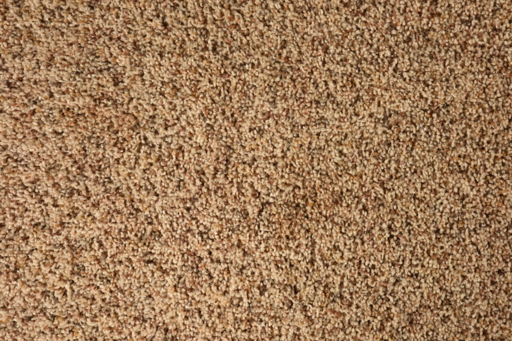 Carpet_Mohawk_Serene_Selection_Spiced_Rum_High_Family_01_Close