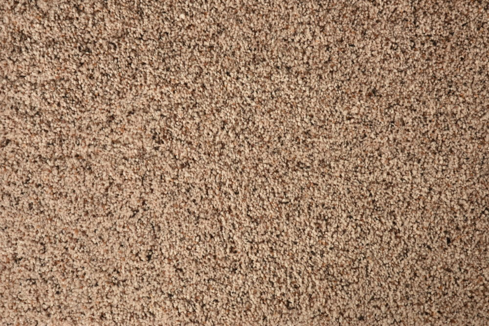 Carpet_Mohawk_Softly_Inspired_III_Mineral_Middle_Family_01_Mineral